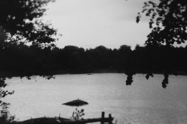 Vintage nature photo